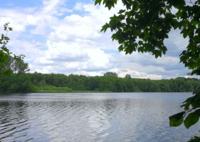 Grabau Naturerlebnis - See