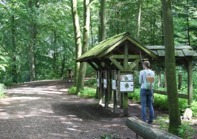 Grabau Naturerlebnis - Naturlehrpfad Station