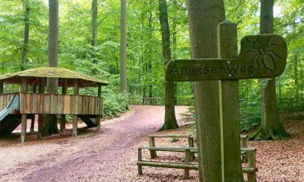 Walderlebnis in Stormarn – auf ins Naturerlebnis Grabau
