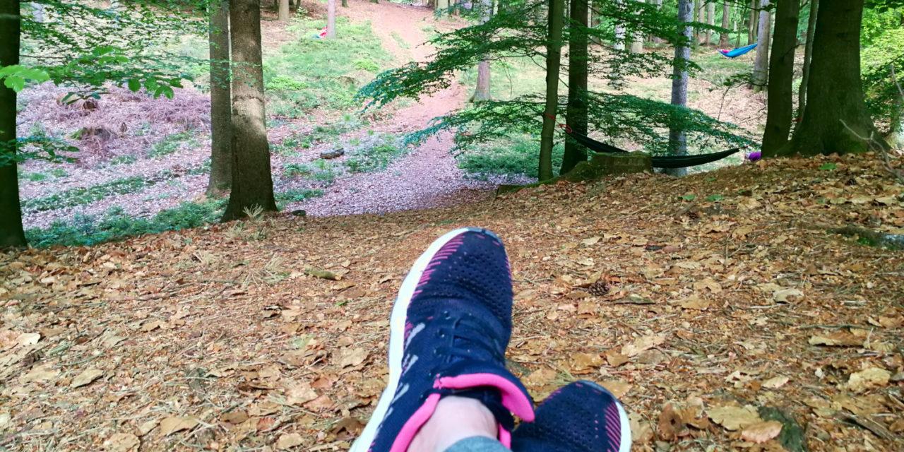 Shinrin Yoku – Waldbaden in der Hahnheide