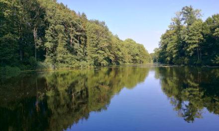 Die 10 schönsten Fotospots in Stormarn