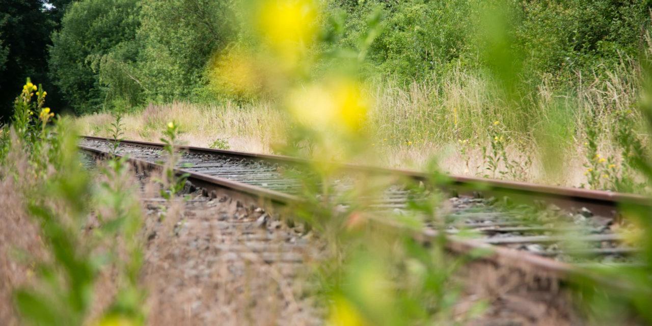 Krimi-Trail auf dem BahnRadWeg B: Detektive auf dem Rad